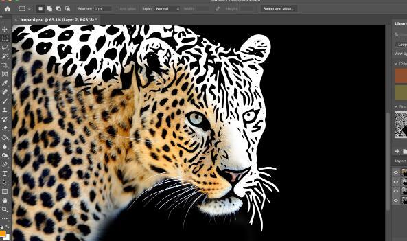 Adobe更新其创意云应用程序