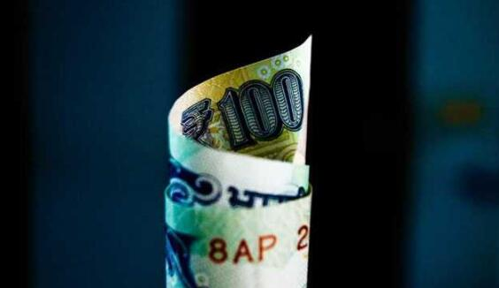 卢比汇率小幅下跌一周下跌35帕萨