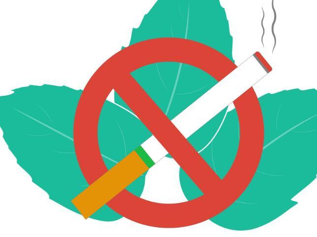 英美烟草公司薄荷醇品牌的销售将受到最直接的影响
