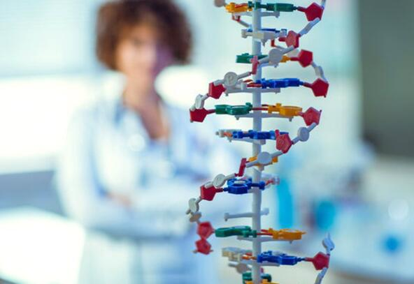 帕金森氏病患者从实验基因治疗中获得长期利益