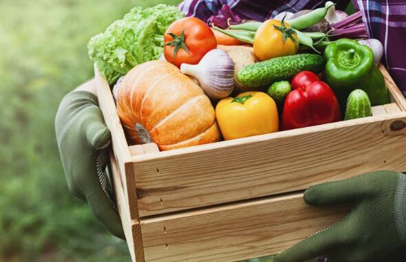 可靠的季度报告不足以使最古老的天然食品分销商之一的投资者满意