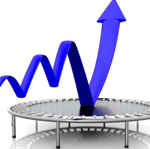 这位云级网络专家预计下一季度的销售额将实现两位数增长