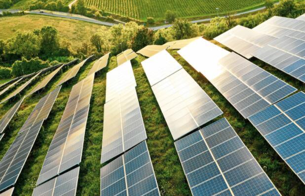在市场抛售中确定哪种可再生能源股票是更好的选择
