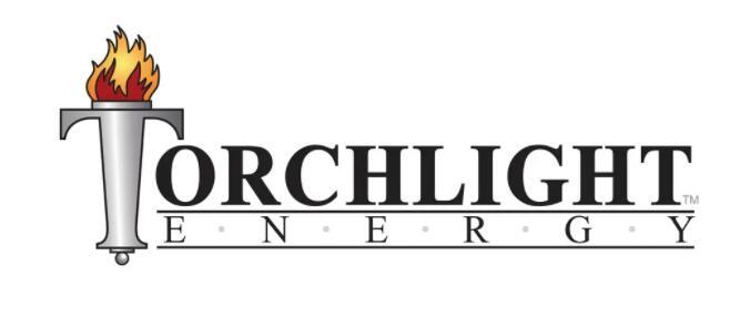 近日Torchlight Energy宣布批准与加拿大的Metamaterial合并