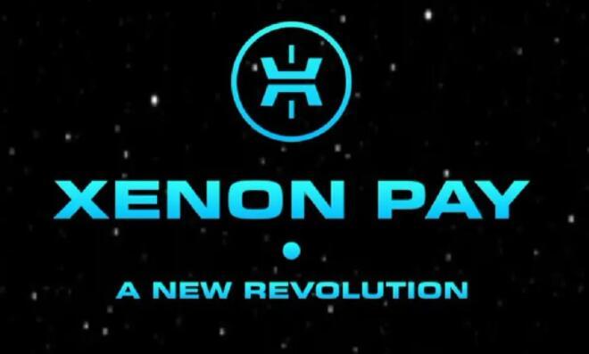 Xenon Pay股票的价格预测